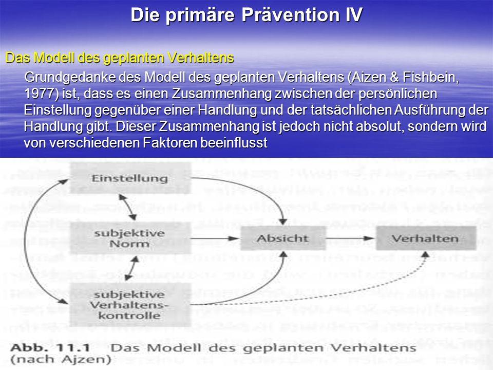 Die primäre Prävention IV
