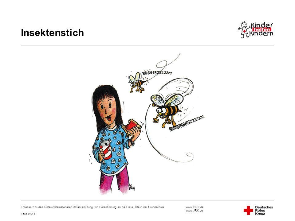 Insektenstich Foliensatz zu den Unterrichtsmaterialien Unfallverhütung und Heranführung an die Erste Hilfe in der Grundschule.
