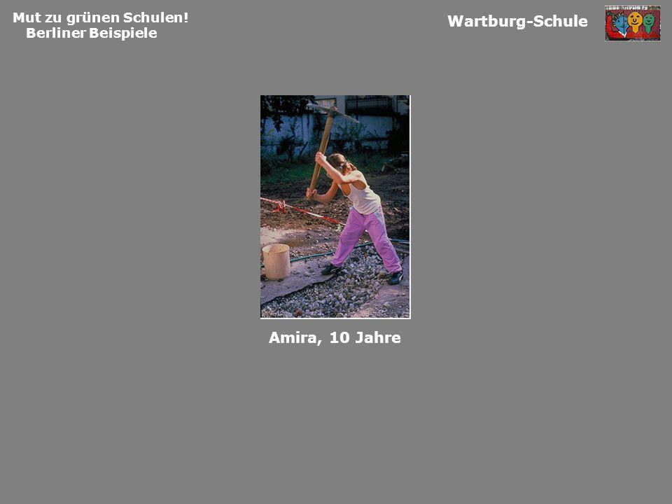 Wartburg-Schule Amira, 10 Jahre