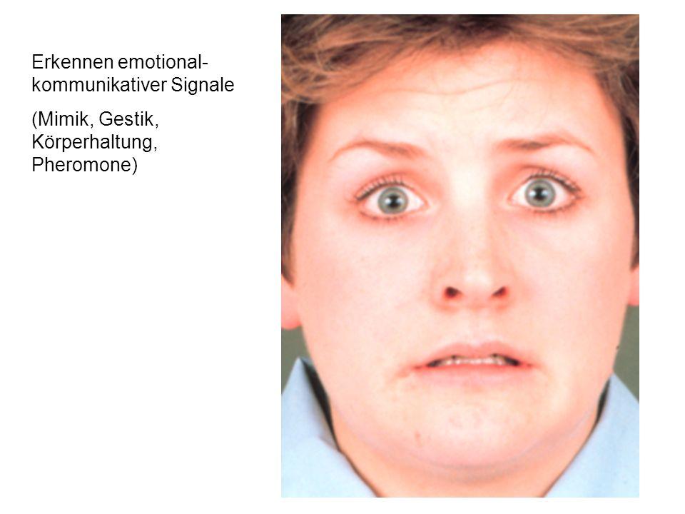 Erkennen emotional-kommunikativer Signale
