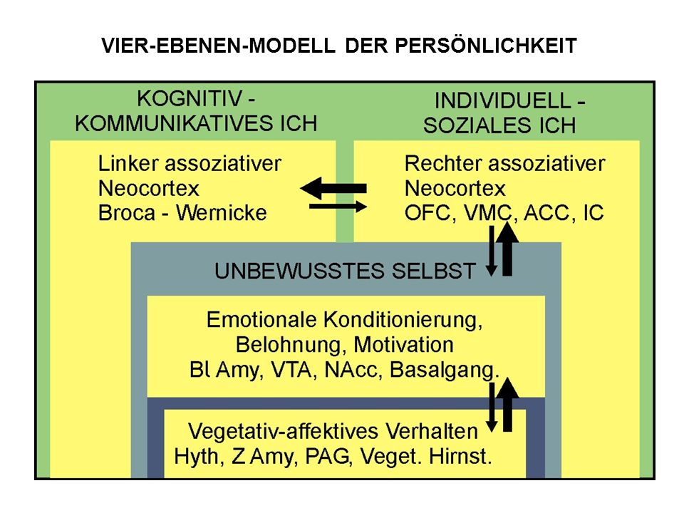 VIER-EBENEN-MODELL DER PERSÖNLICHKEIT