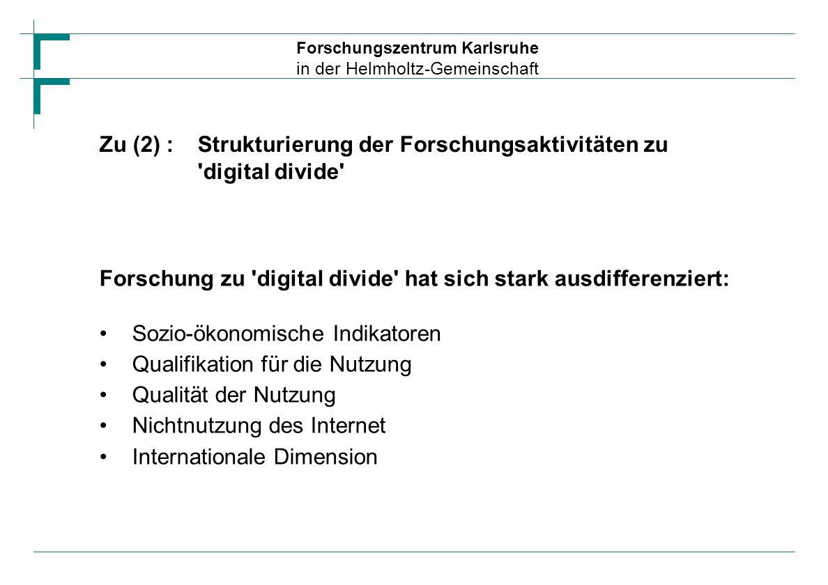 Zu (2) : Strukturierung der Forschungsaktivitäten zu digital divide