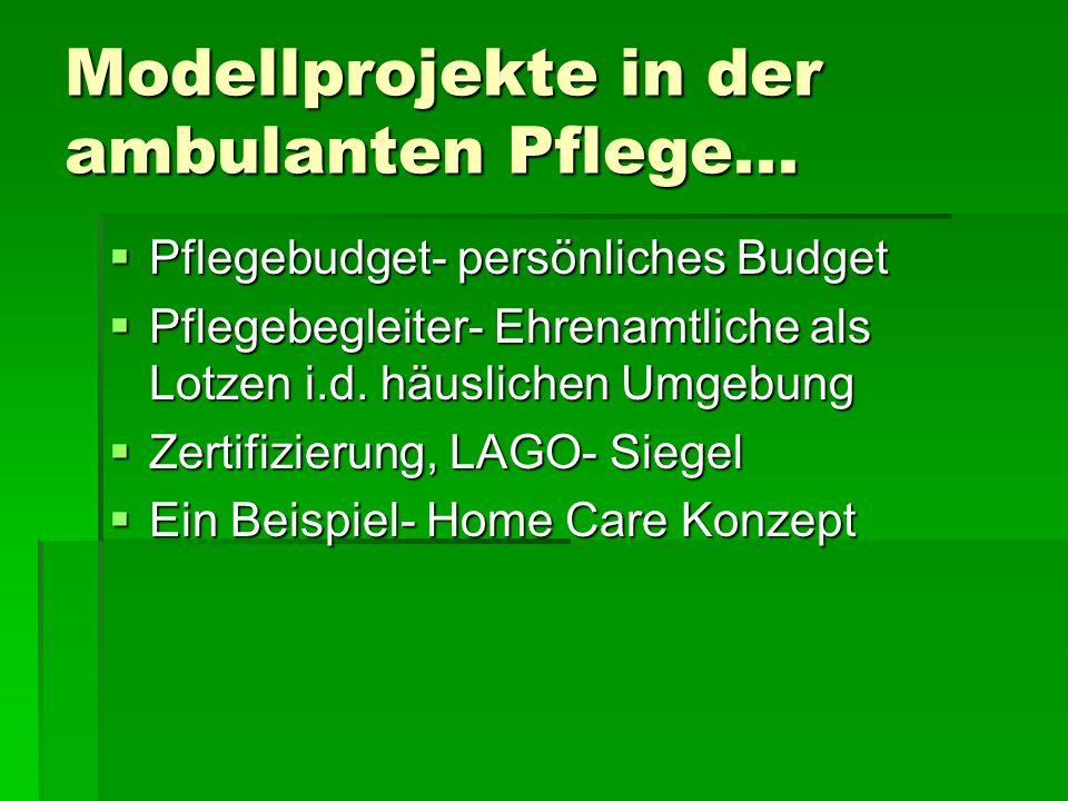 Modellprojekte in der ambulanten Pflege...