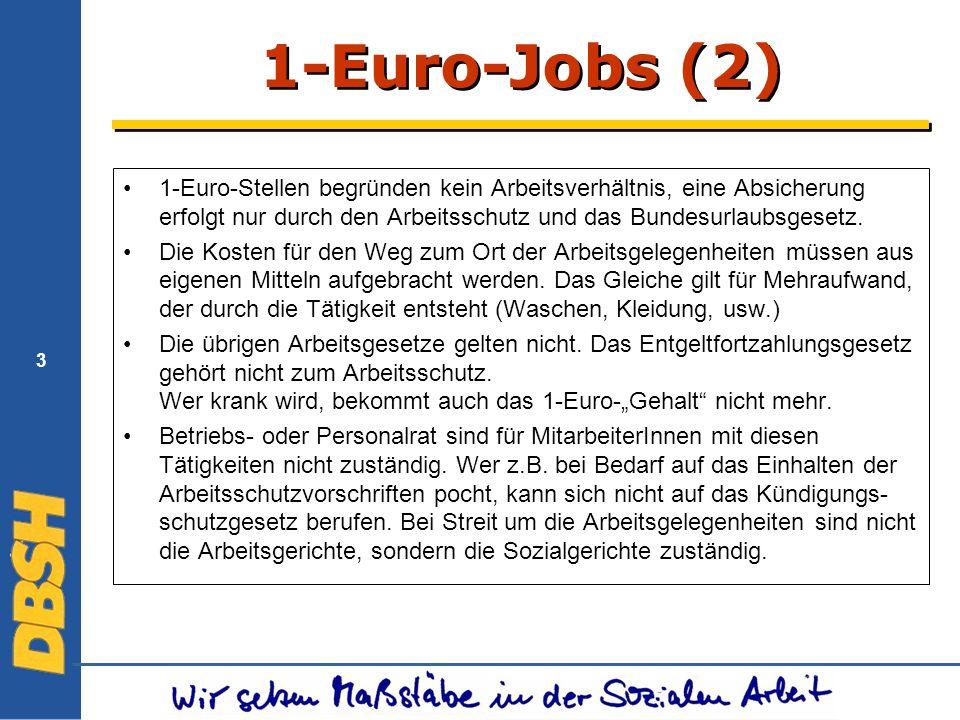 1-Euro-Jobs (2) 1-Euro-Stellen begründen kein Arbeitsverhältnis, eine Absicherung erfolgt nur durch den Arbeitsschutz und das Bundesurlaubsgesetz.