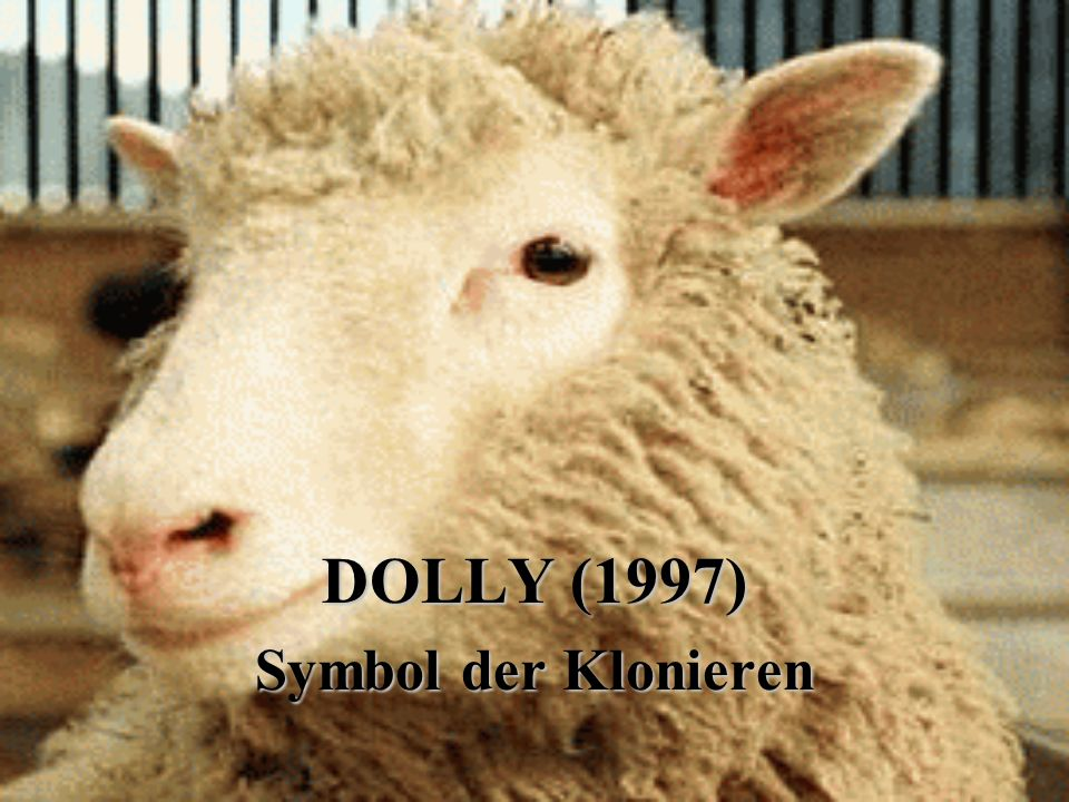 DOLLY (1997) Symbol der Klonieren