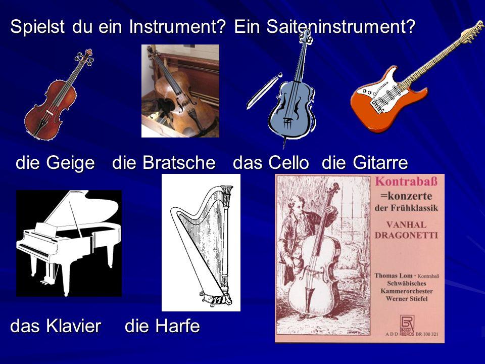 Spielst du ein Instrument Ein Saiteninstrument