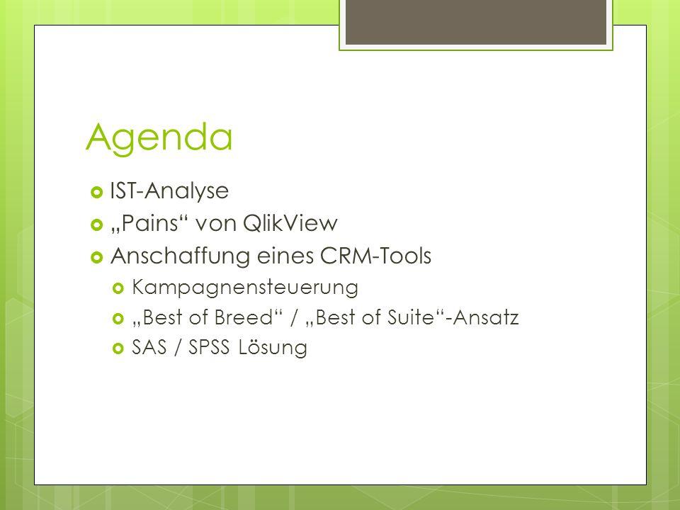 """Agenda IST-Analyse """"Pains von QlikView Anschaffung eines CRM-Tools"""
