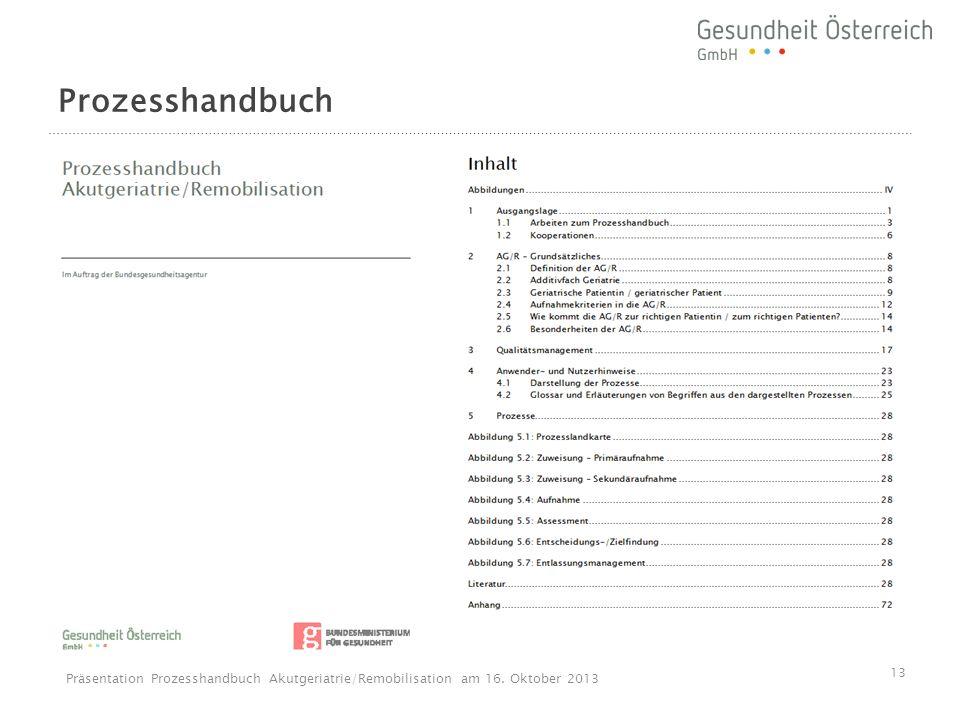 Prozesshandbuch 13 Präsentation Prozesshandbuch Akutgeriatrie/Remobilisation am 16. Oktober 2013