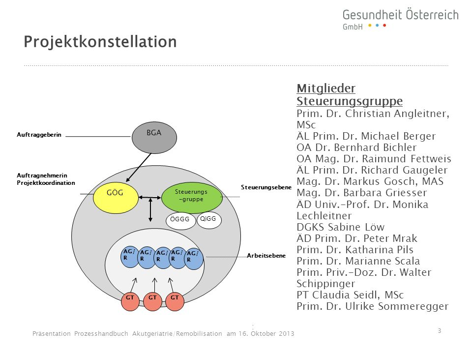 Projektkonstellation