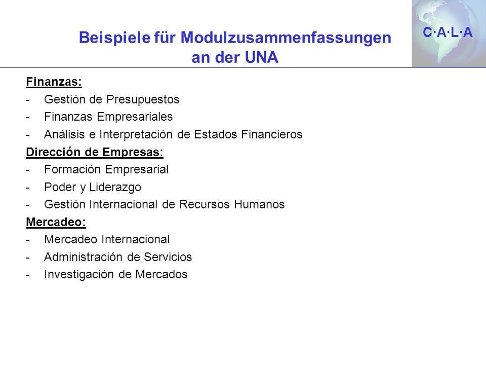 Beispiele für Modulzusammenfassungen an der UNA