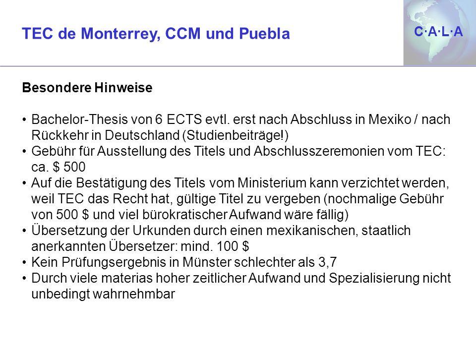 TEC de Monterrey, CCM und Puebla