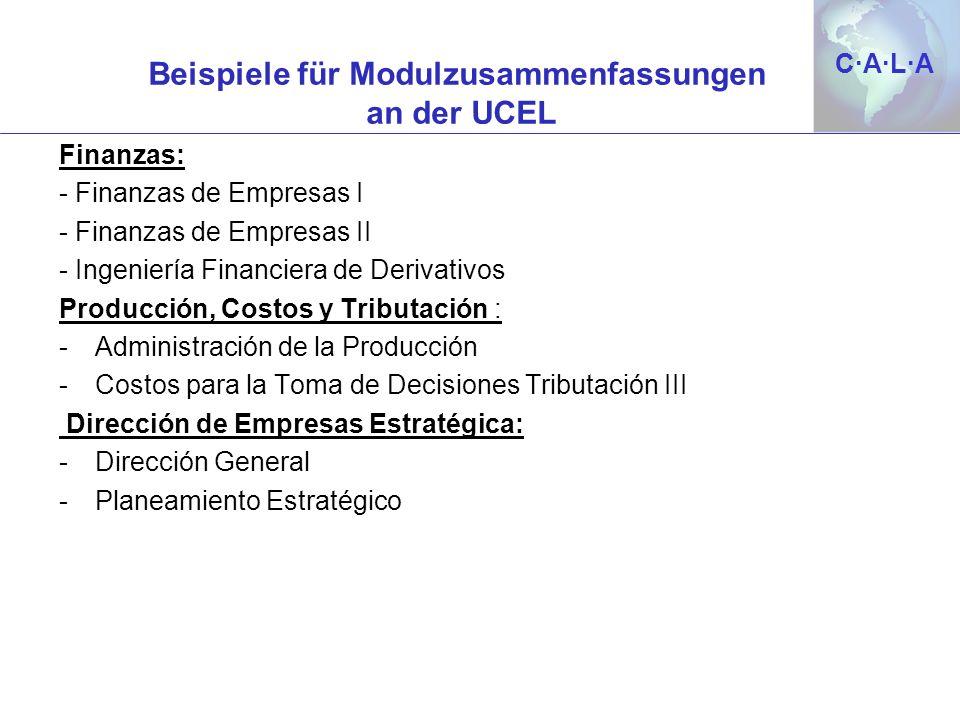 Beispiele für Modulzusammenfassungen an der UCEL