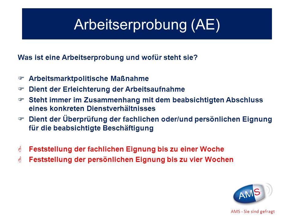 Arbeitserprobung (AE)