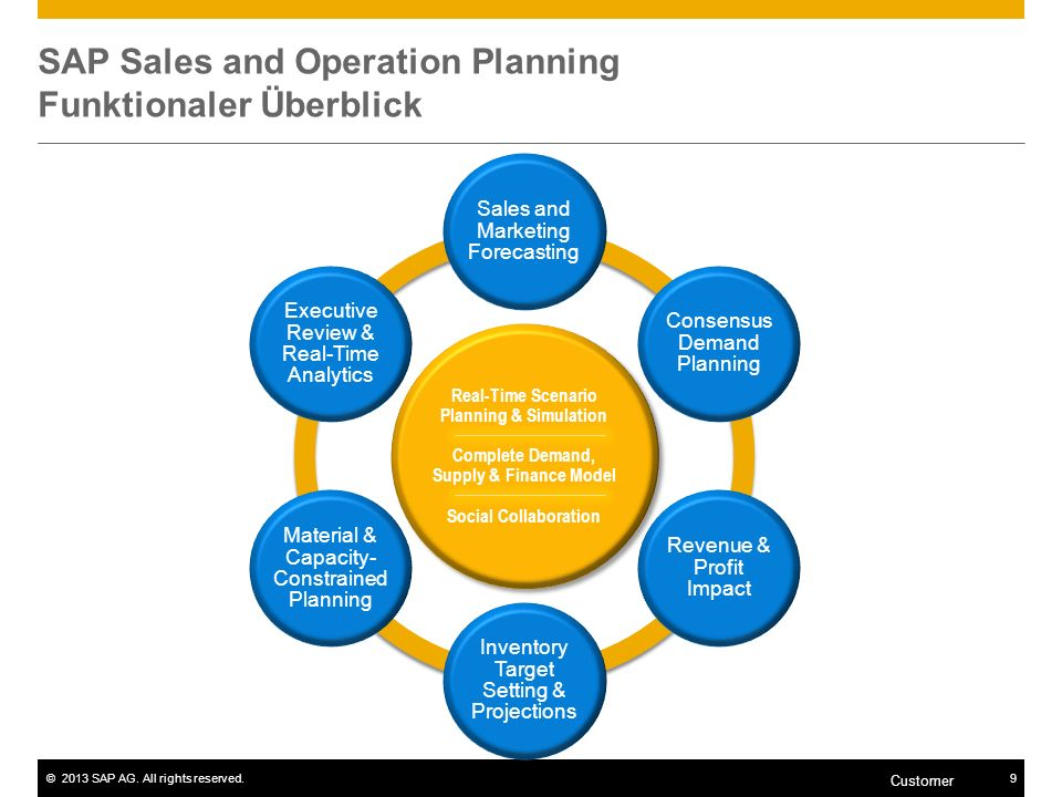 SAP Sales and Operation Planning Funktionaler Überblick