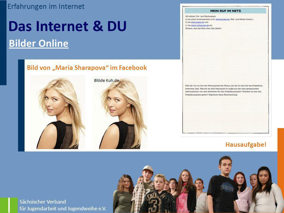 Das Internet & DU Bilder Online Erfahrungen im Internet