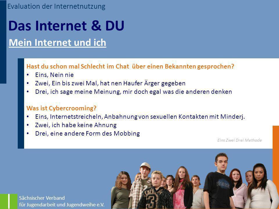 Das Internet & DU Mein Internet und ich Evaluation der Internetnutzung
