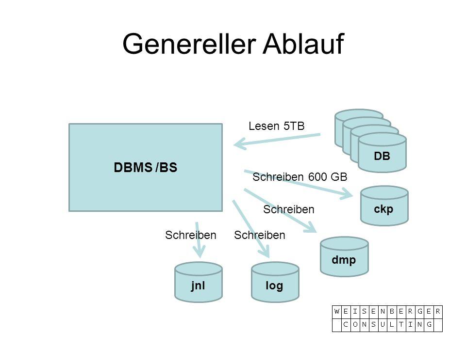 Genereller Ablauf DBMS /BS Lesen 5TB DB Schreiben 600 GB ckp Schreiben