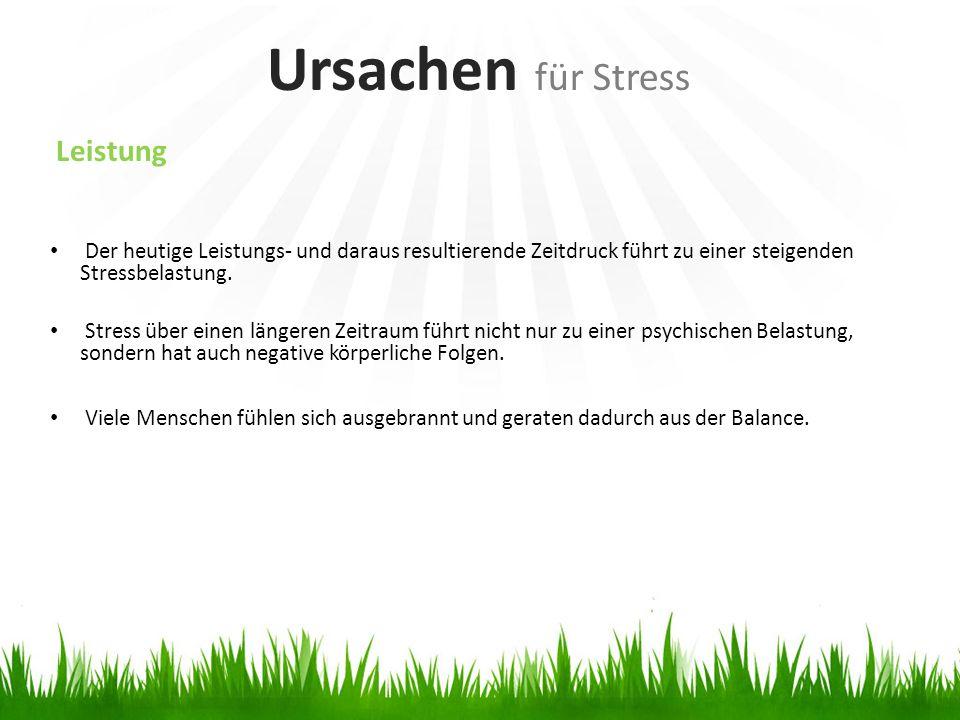 Ursachen für Stress Leistung