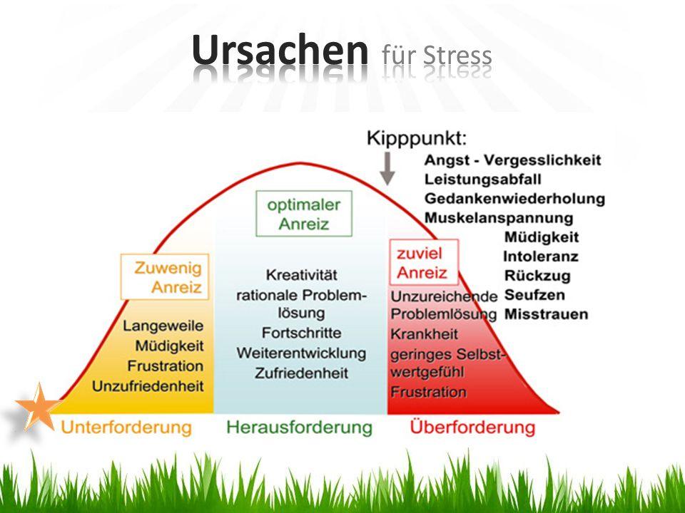 Ursachen für Stress