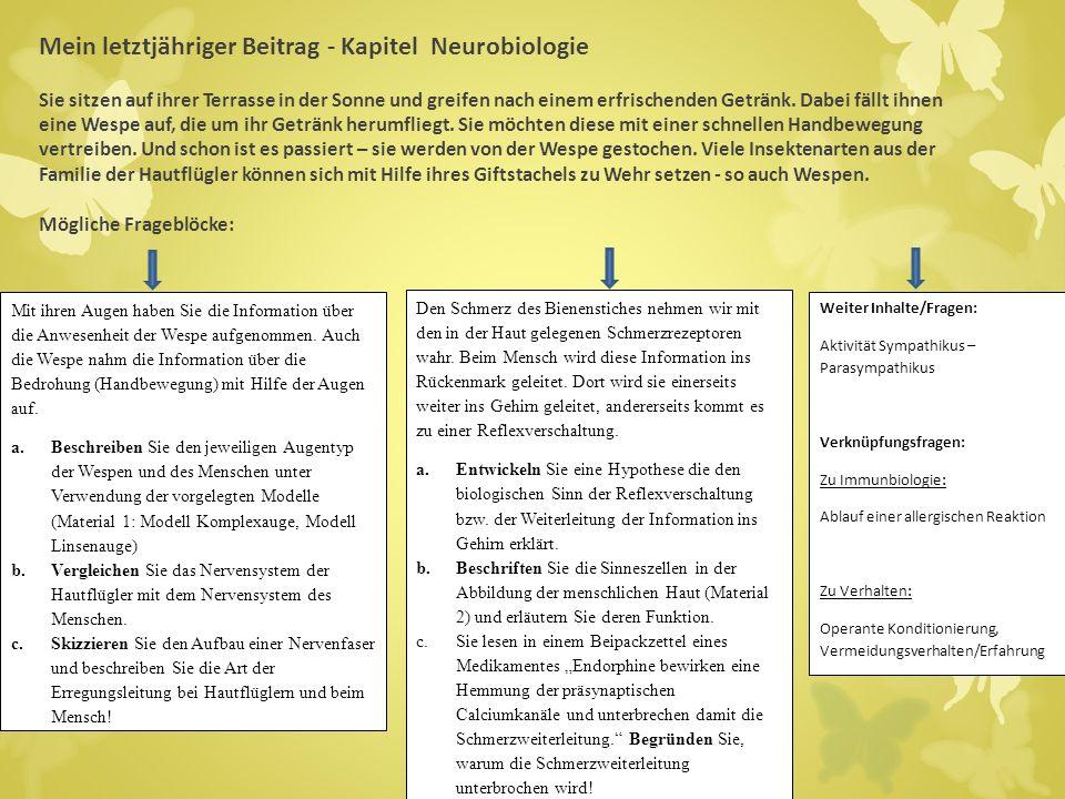 Mein letztjähriger Beitrag - Kapitel Neurobiologie