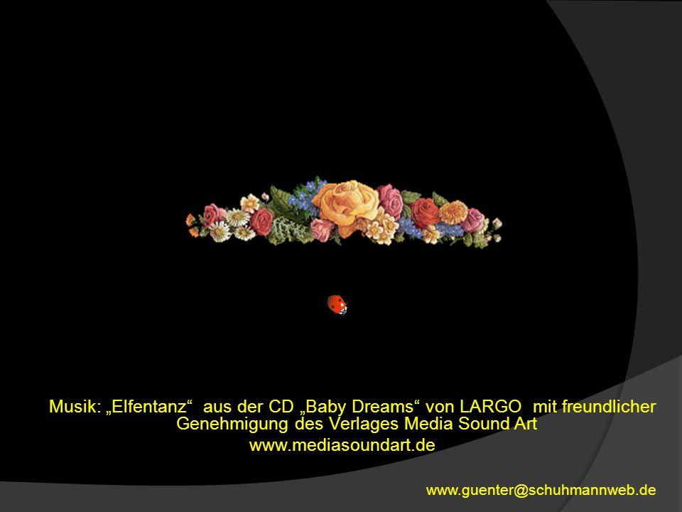 """Musik: """"Elfentanz aus der CD """"Baby Dreams von LARGO mit freundlicher Genehmigung des Verlages Media Sound Art www.mediasoundart.de"""
