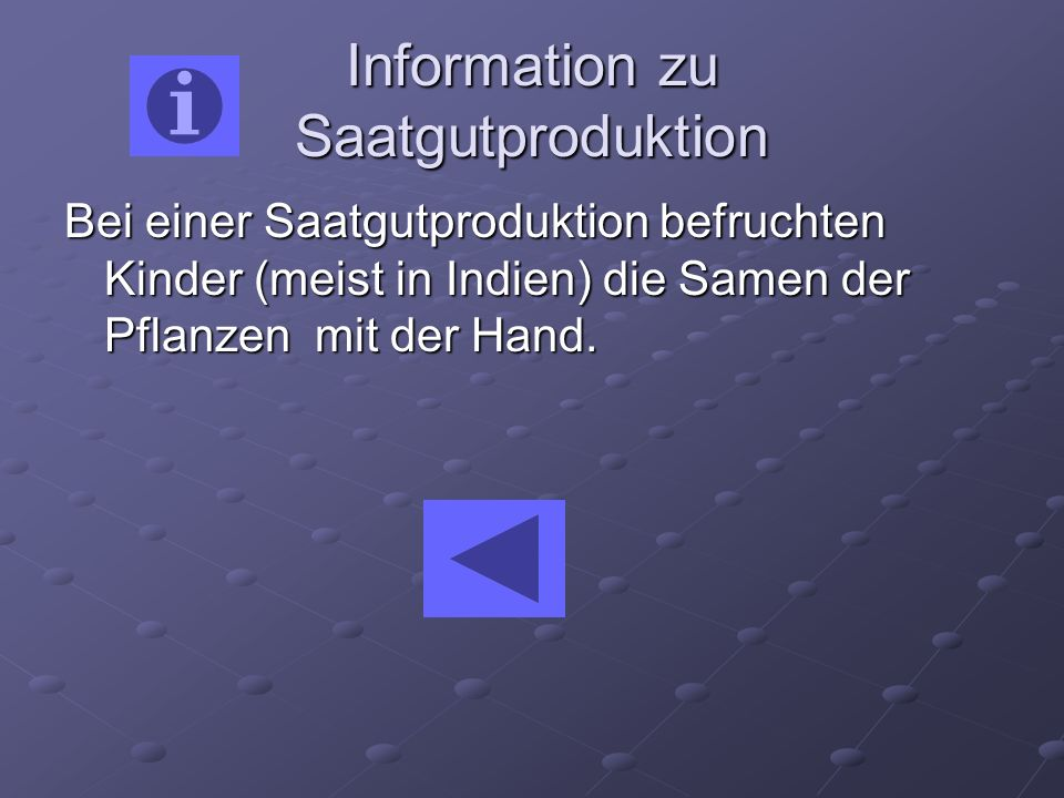 Information zu Saatgutproduktion