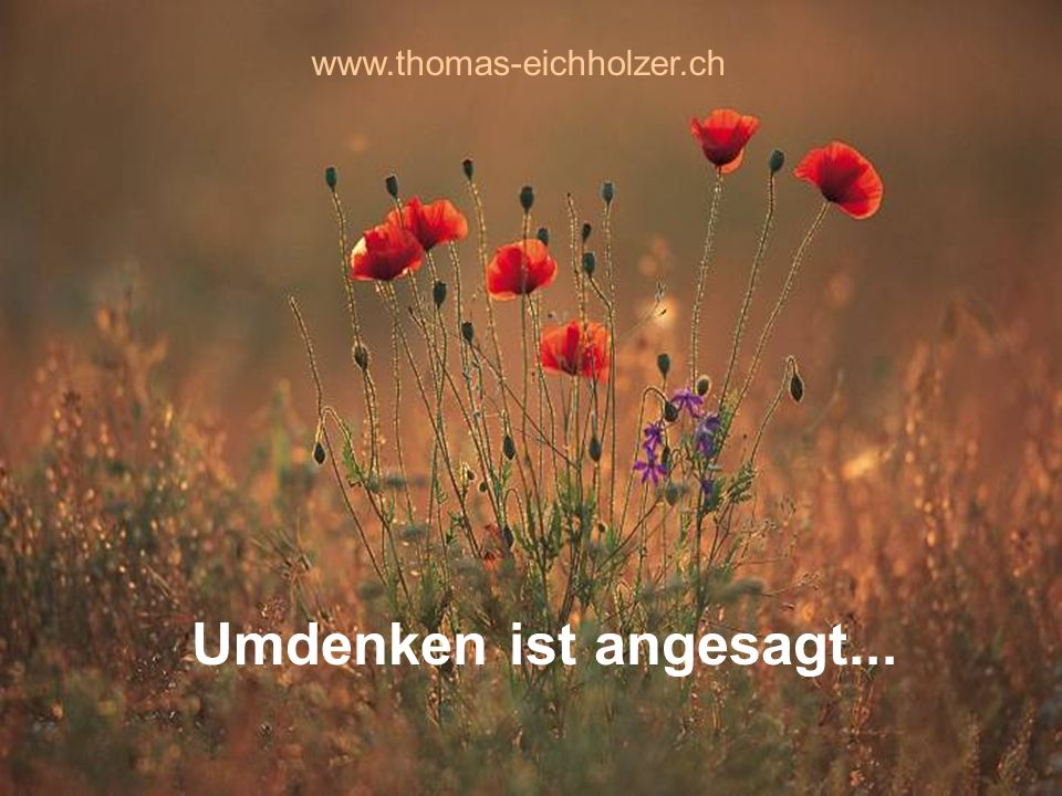 www.thomas-eichholzer.ch Umdenken ist angesagt...