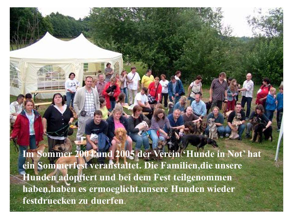 Im Sommer 2004 und 2005 der Verein 'Hunde in Not' hat ein Sommerfest veranstaltet. Die Familien,die unsere Hunden adoptiert und bei dem Fest teilgenommen haben,haben es ermoeglicht,unsere Hunden wieder festdruecken zu duerfen.