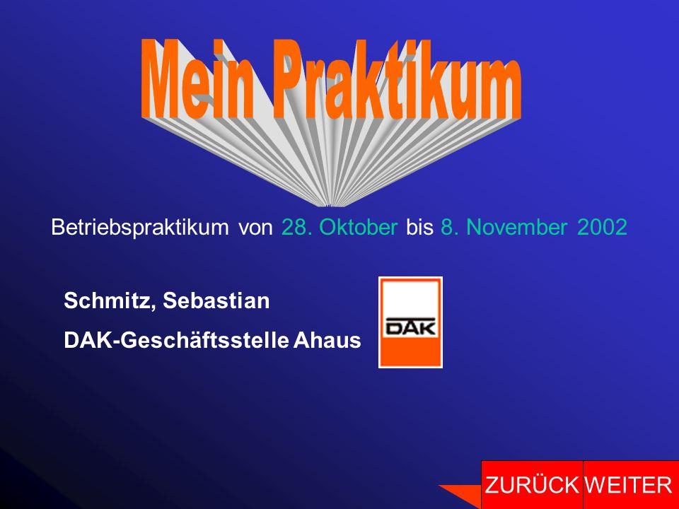 Betriebspraktikum von 28. Oktober bis 8. November 2002