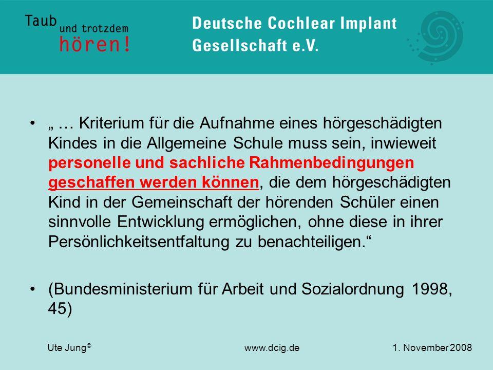 (Bundesministerium für Arbeit und Sozialordnung 1998, 45)