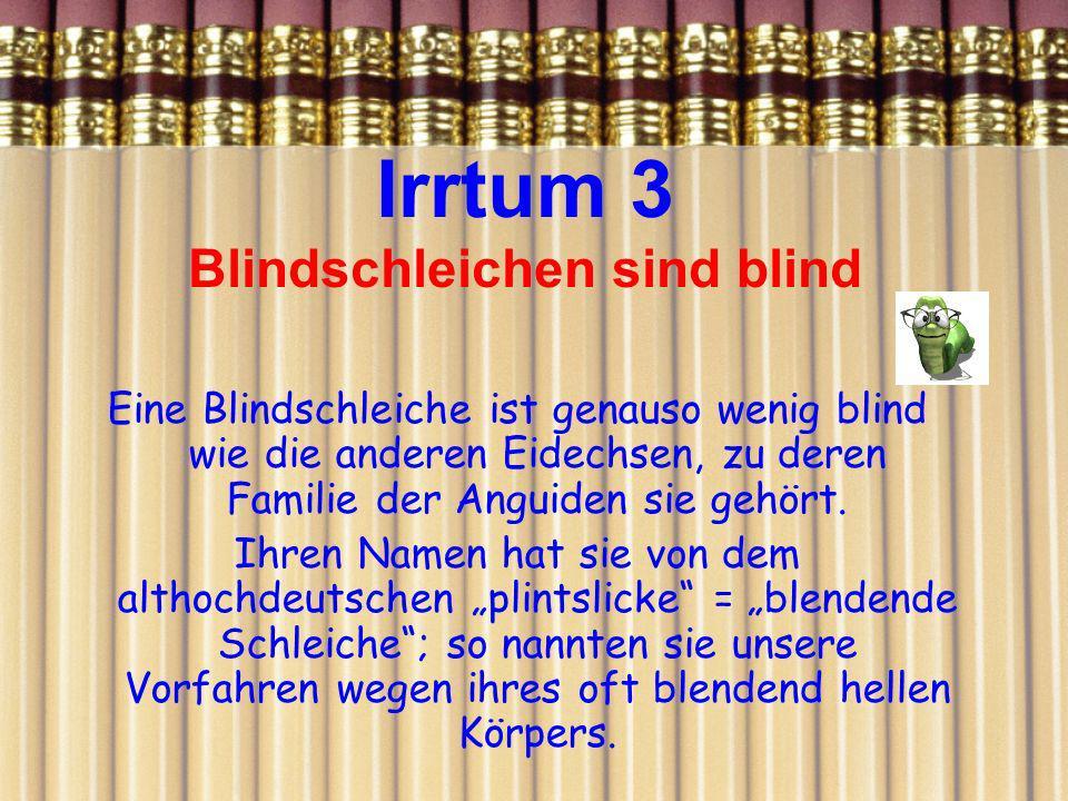 Irrtum 3 Blindschleichen sind blind