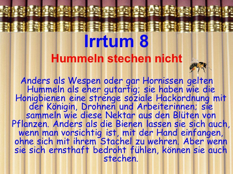 Irrtum 8 Hummeln stechen nicht