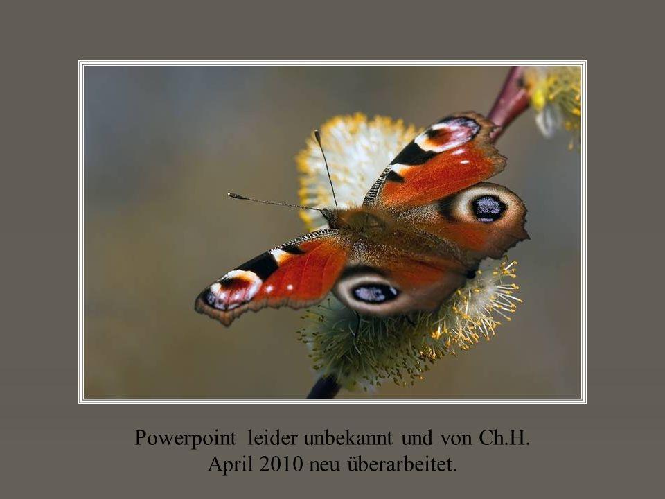 Powerpoint leider unbekannt und von Ch.H. April 2010 neu überarbeitet.