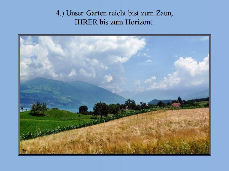 4.) Unser Garten reicht bist zum Zaun,