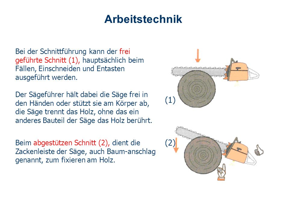 Arbeitstechnik Bei der Schnittführung kann der frei geführte Schnitt (1), hauptsächlich beim Fällen, Einschneiden und Entasten ausgeführt werden.