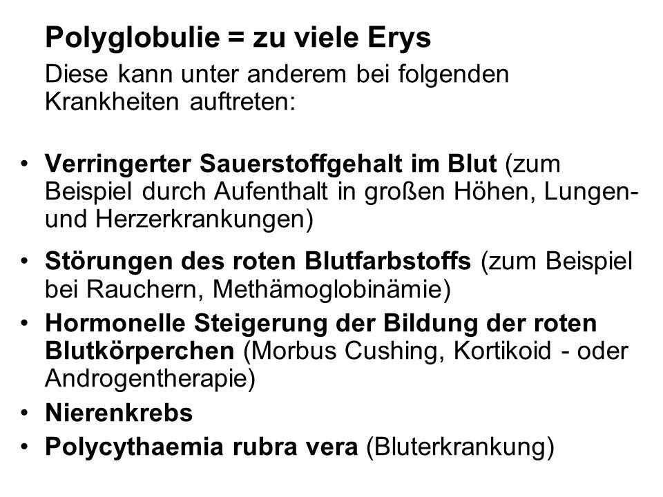 Polyglobulie = zu viele Erys