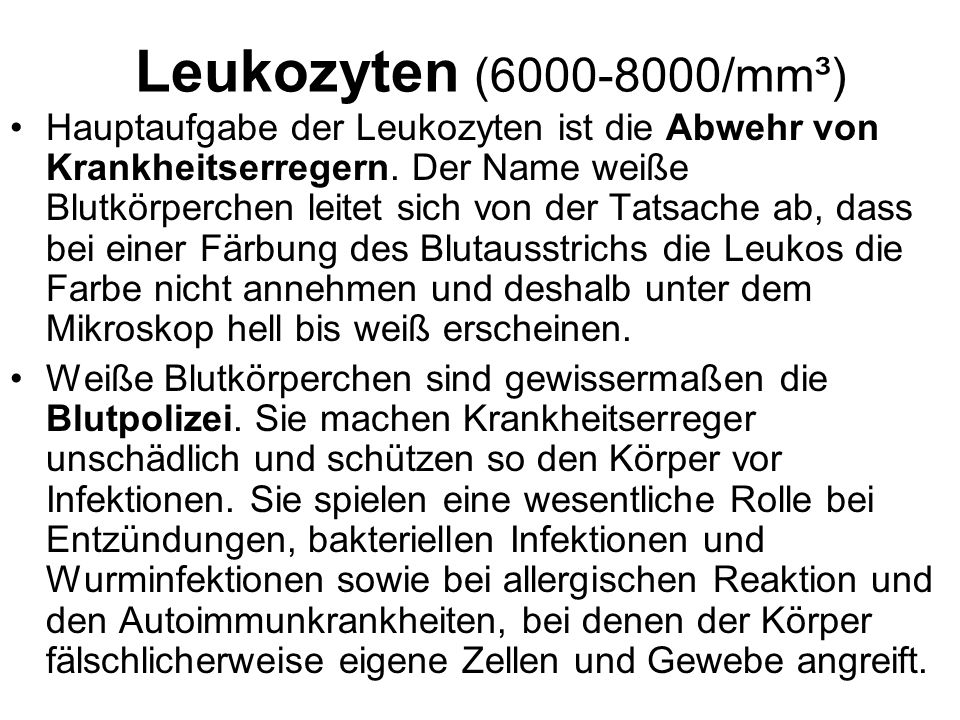 Leukozyten (6000-8000/mm³)