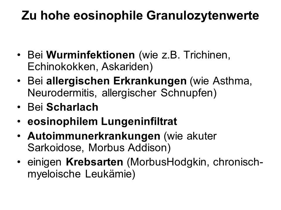 Zu hohe eosinophile Granulozytenwerte