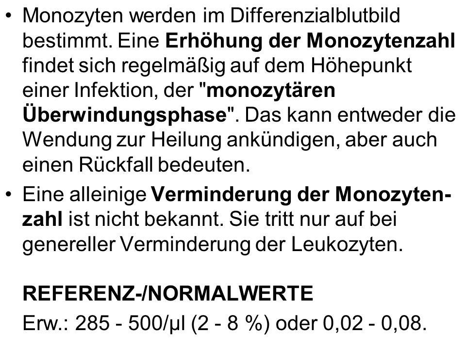 Monozyten werden im Differenzialblutbild bestimmt