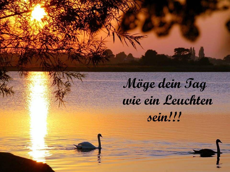 Möge dein Tag wie ein Leuchten sein!!!