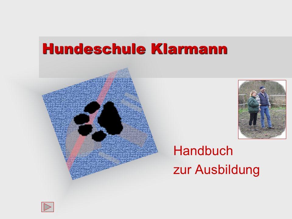 Handbuch zur Ausbildung