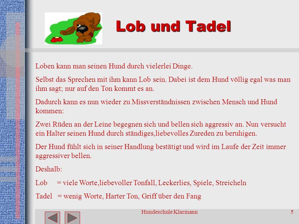 Lob und Tadel Loben kann man seinen Hund durch vielerlei Dinge.