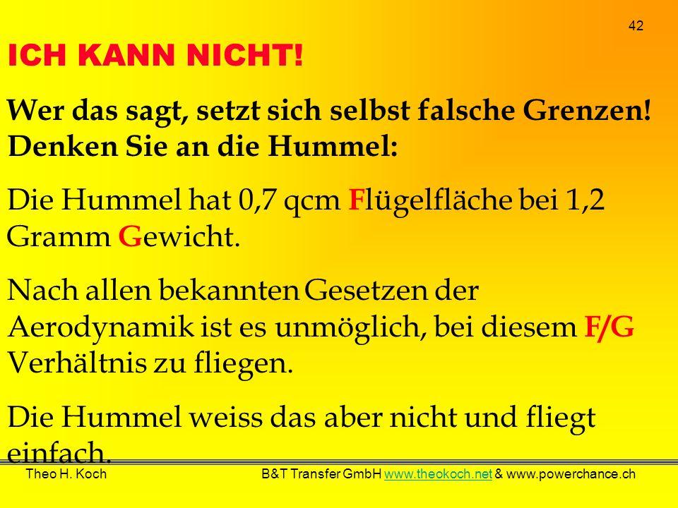 Die Hummel hat 0,7 qcm Flügelfläche bei 1,2 Gramm Gewicht.