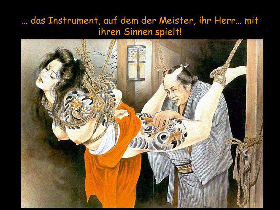 … das Instrument, auf dem der Meister, ihr Herr… mit ihren Sinnen spielt!