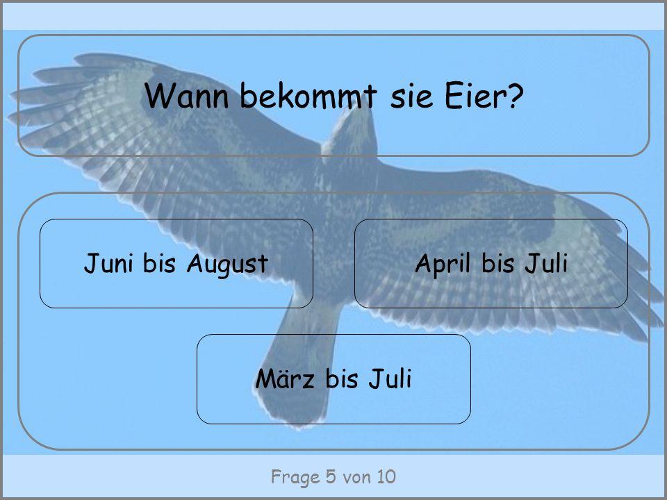 Wann bekommt sie Eier Juni bis August April bis Juli März bis Juli