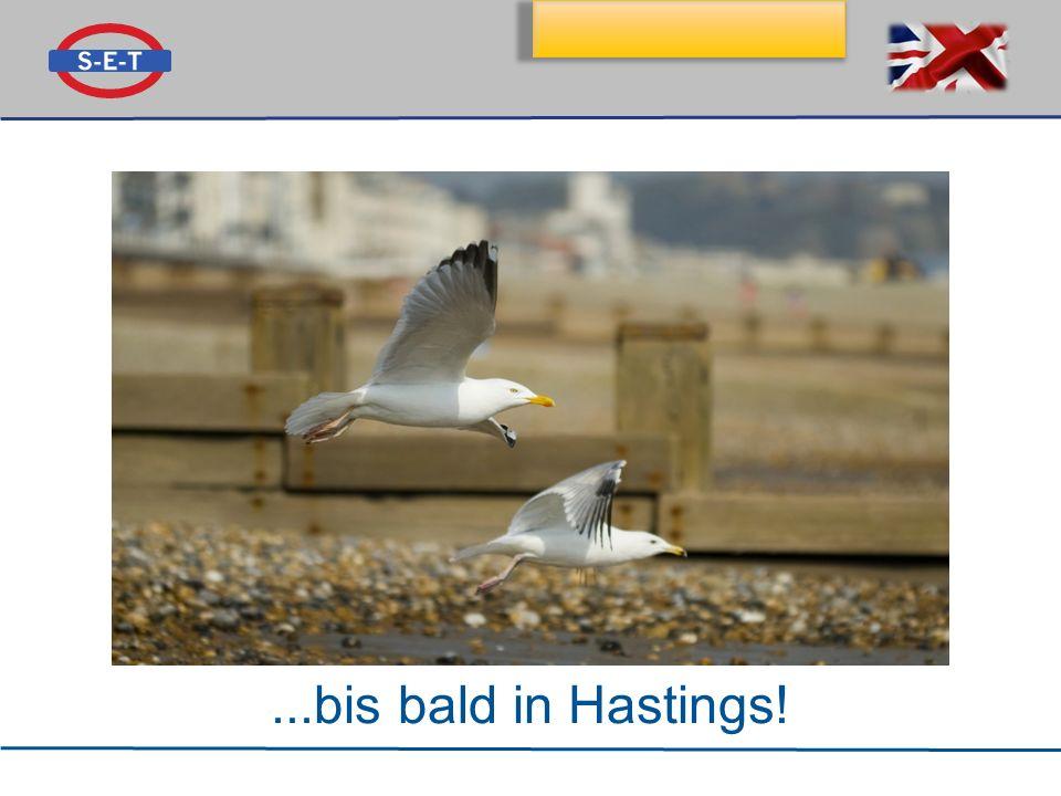 ...bis bald in Hastings!