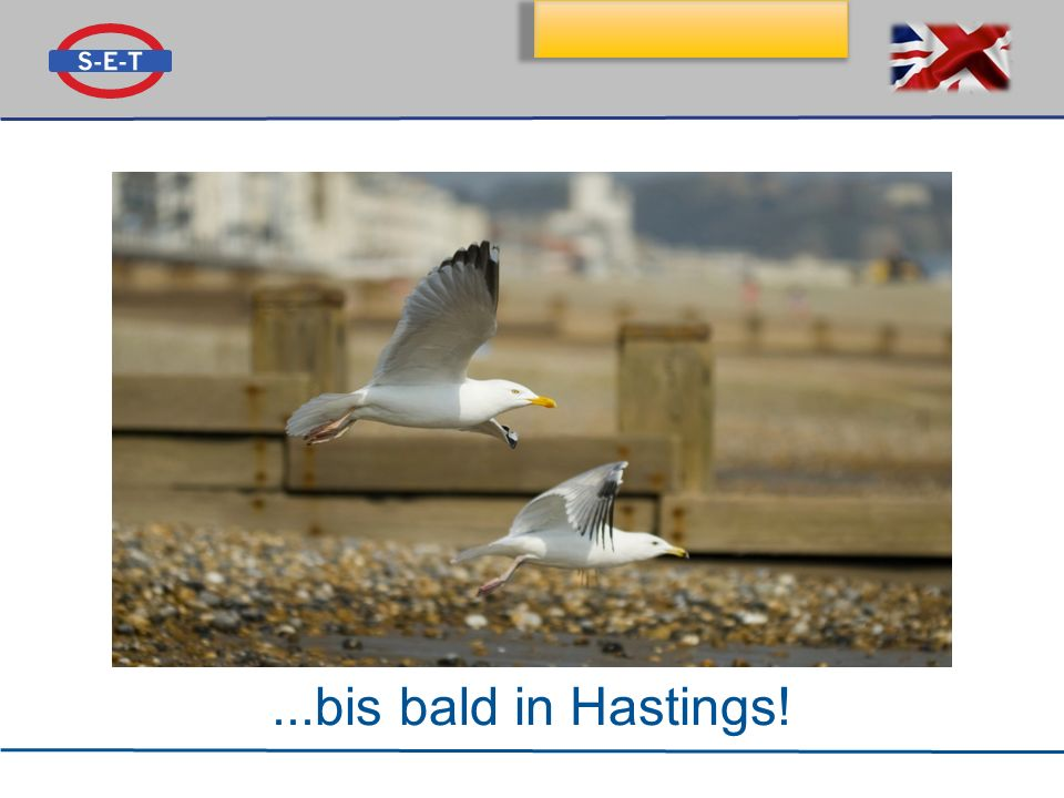...bis bald in Hastings!