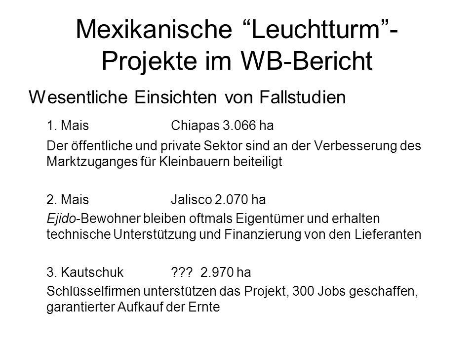 Mexikanische Leuchtturm -Projekte im WB-Bericht
