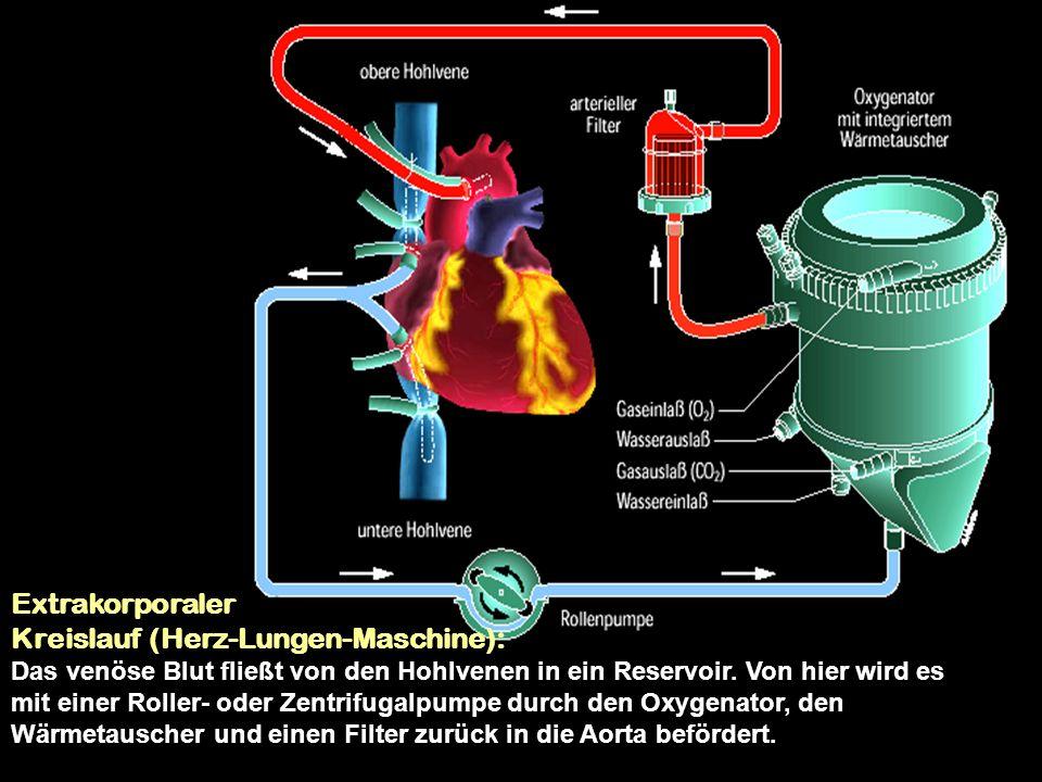 Anhang: Eingriffe an den Herzklappen