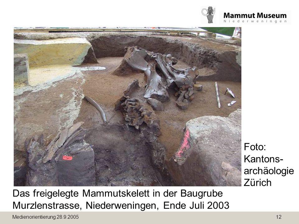 Foto: Kantons-archäologie Zürich